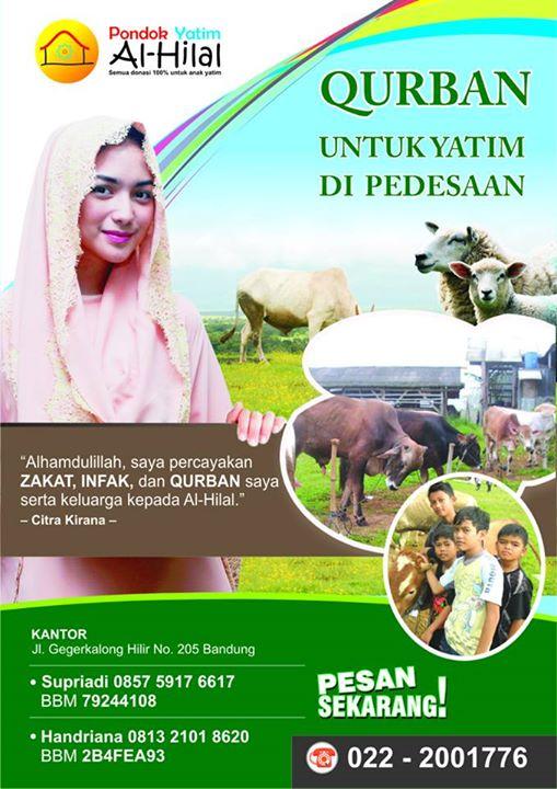 Harga Hewan qurban termurah 2014 Bandung
