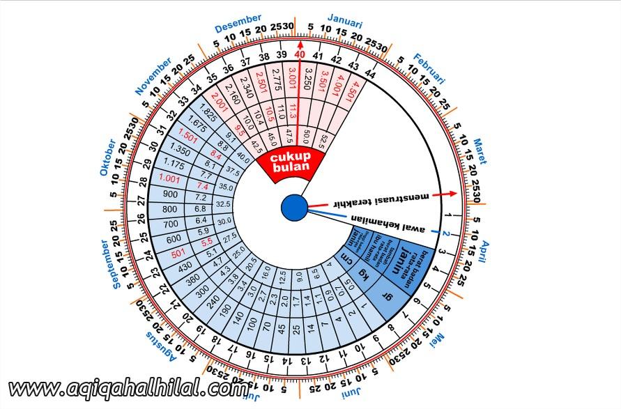 Cara menghitung usia kehamilan menggunakan kalender Putar