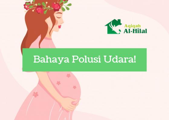 Potensi Bahaya Polusi Udara Bagi Ibu Hamil & Tips Agar Tetap Aman 2