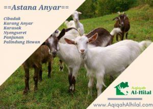layanan jasa paket aqiqah astana anyar
